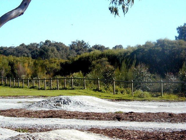 BMX track planting July 03