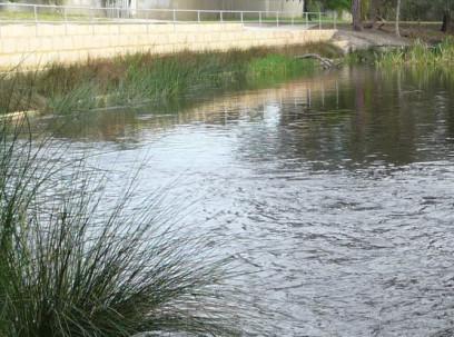 Urban Waterways Renewal – Bannister Creek