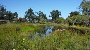 Hawkesbury Lakes