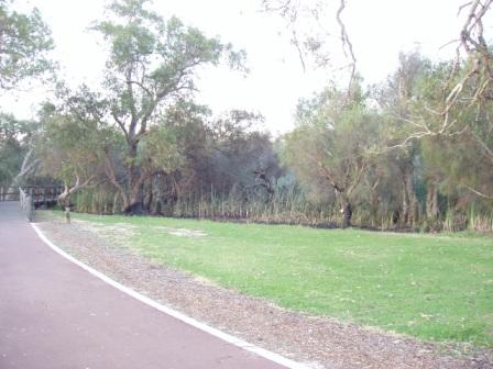 Canning River Regional Park near Kent St weir