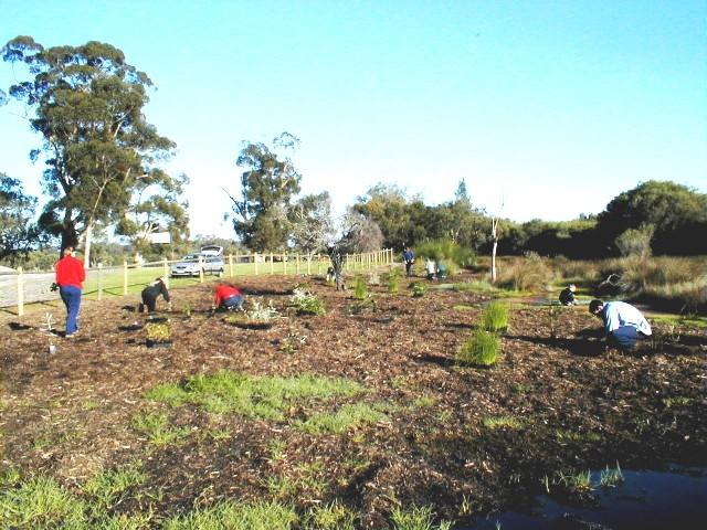 WWAG BMX planting day June02